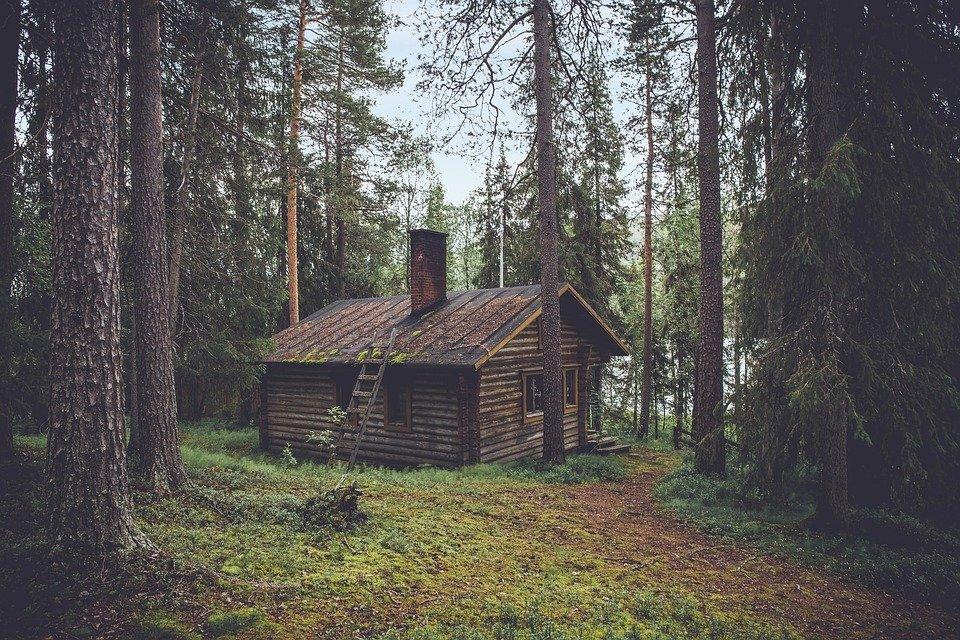 Domek v lese