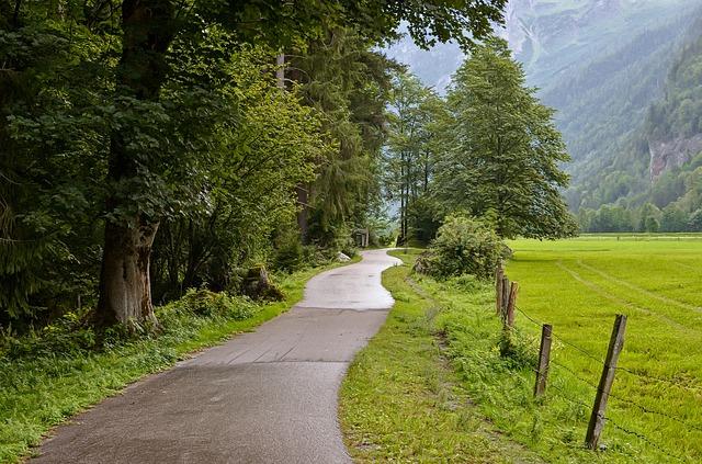 cesta v přírodě